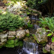 A beautiful moss covered waterfall made of stone flowing into a water garden.