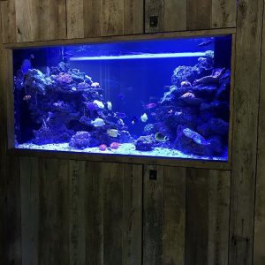 An aquarium installed with custom barn wood cabinetry.