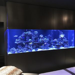 A custom built in aquarium installed with very modern cabinetry.